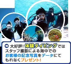体験ダイビング 記念写真CDプレゼント