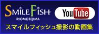 スマイルフィッシュ YouTube