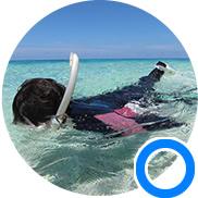 泳ぐ際の目線